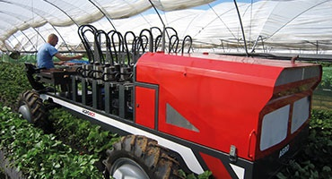 easy chain in use in harvesting machines